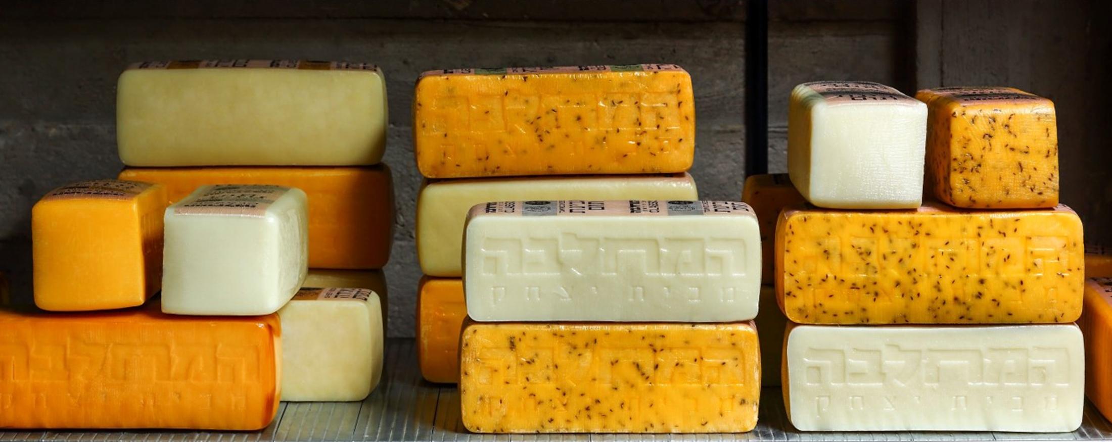 תמונת אווירה - גבינות בחדר אכסון תמונת אווירה - גבינות בחדר אכסון