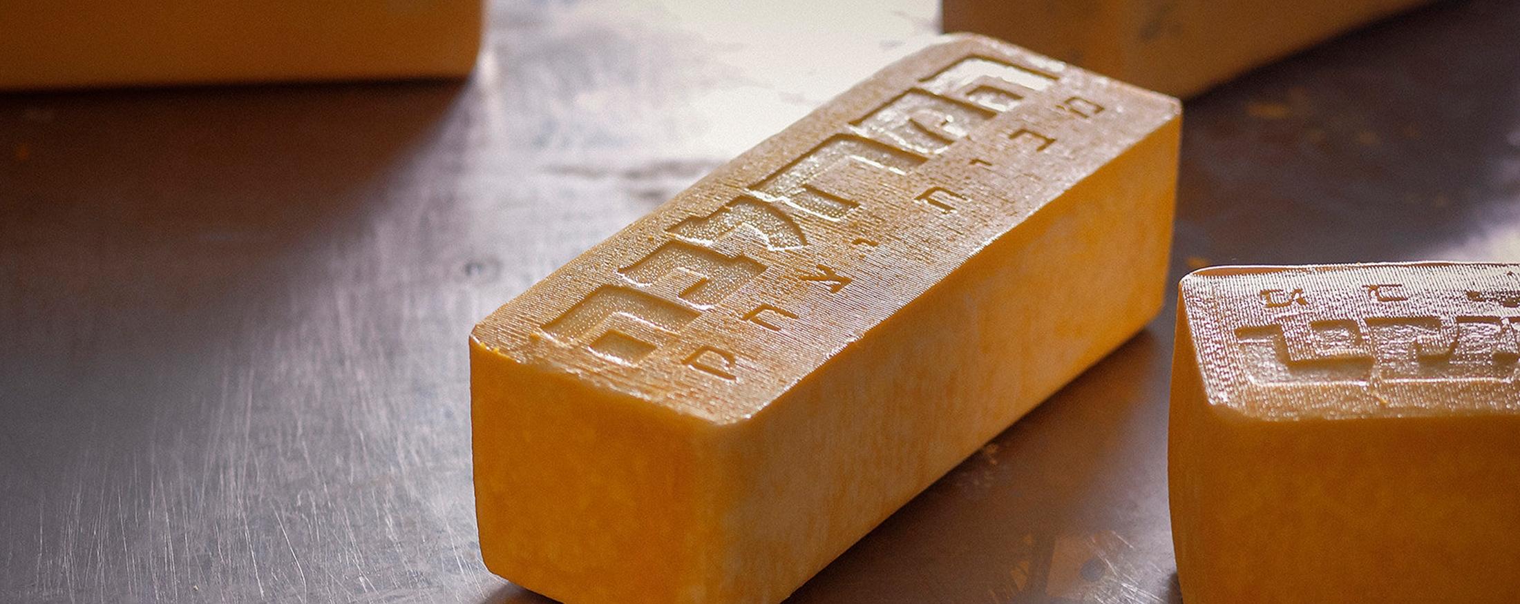 תמונת אווירה - תקריב גבינה
